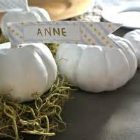 Mini White pumpkin escort cards