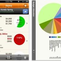 Wedding Apps: Wedding Budget